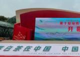 福鼎白茶谱新篇主题的第十届福鼎白茶开茶节在福建福鼎市点头镇举行